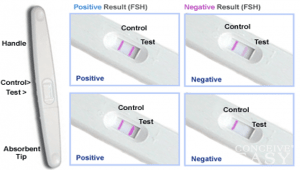 how do ovulation tests work