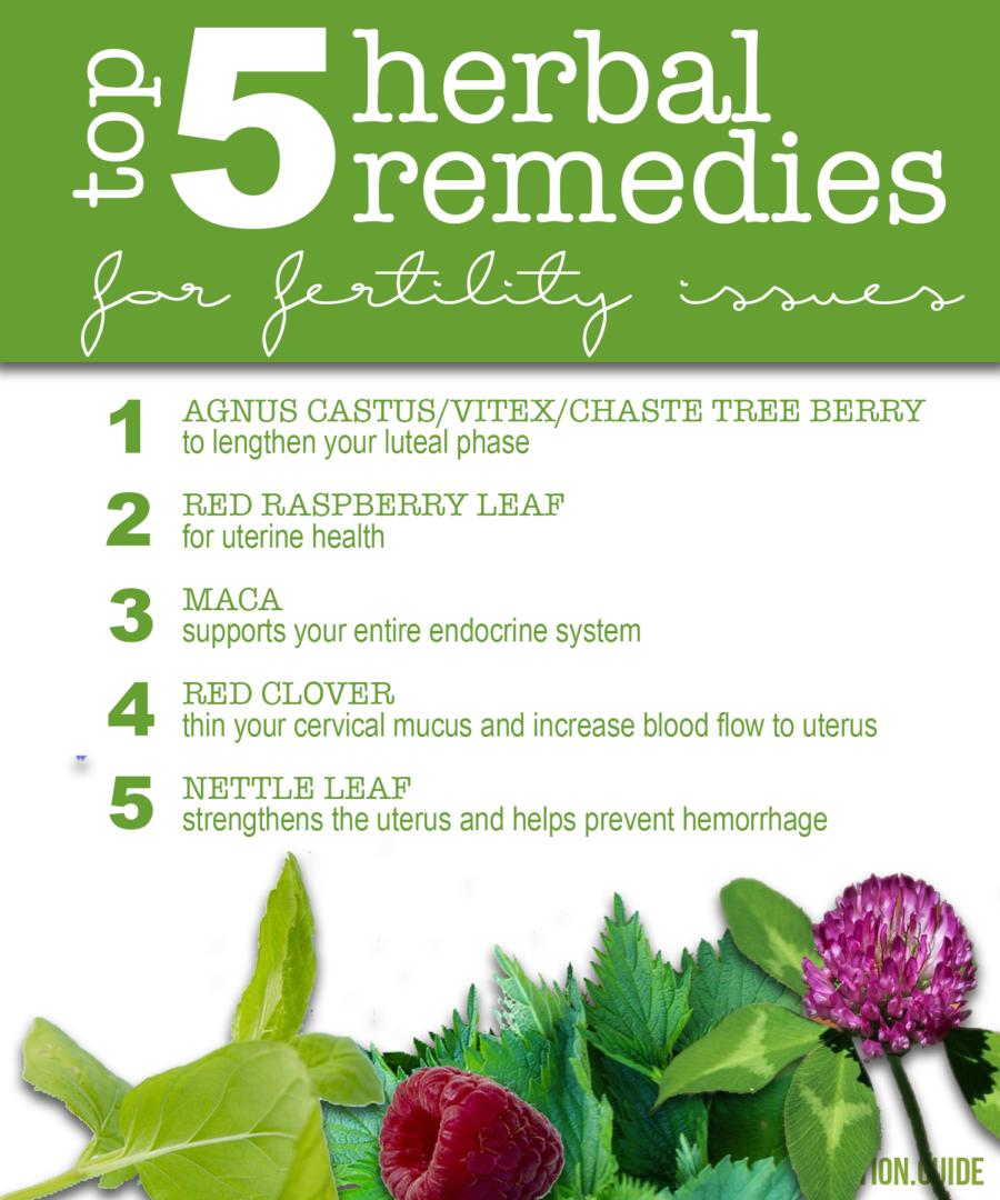 herbal remedies fertility