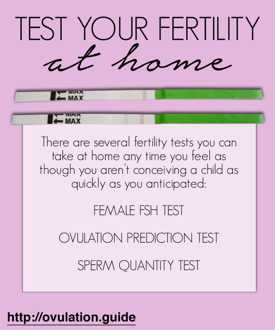 home fertility test