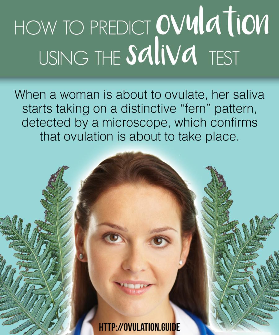 ovulation saliva test