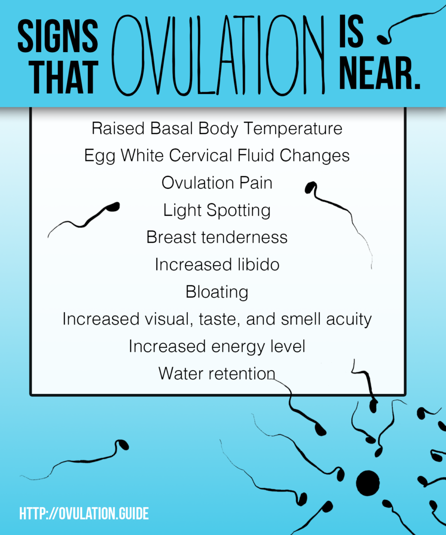 signs of ovulation day